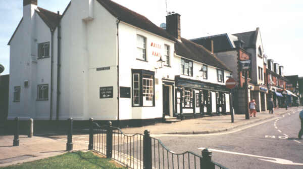 White Hart Photo